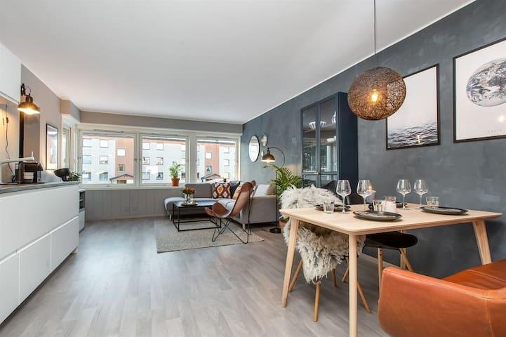 Trondheim Classy Apartment
