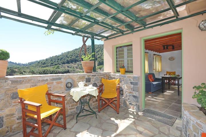 Skopelos Selinophos country house