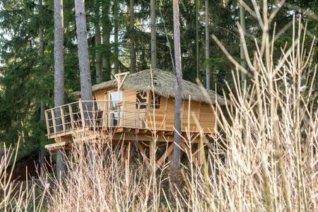 Resort Ralsko Treehouse
