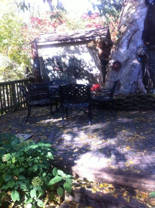 Back yard patio area