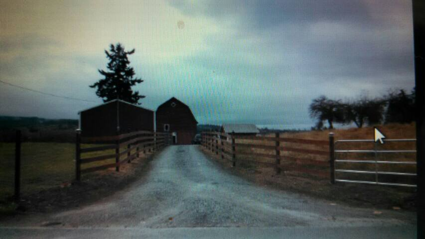 country living in a 40 acres farm - Stanwood - บ้าน