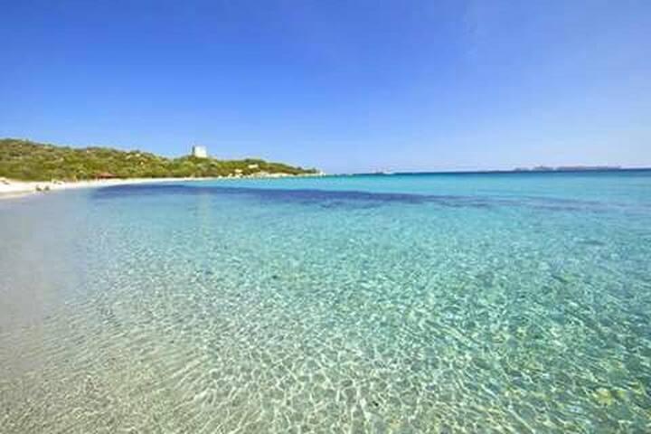 Sardinien Urlaub auf dem Bauernhof II