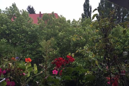 Two rooms - close to city and Sea - Berlin