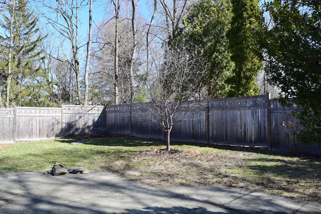 fully fenced-in back yard