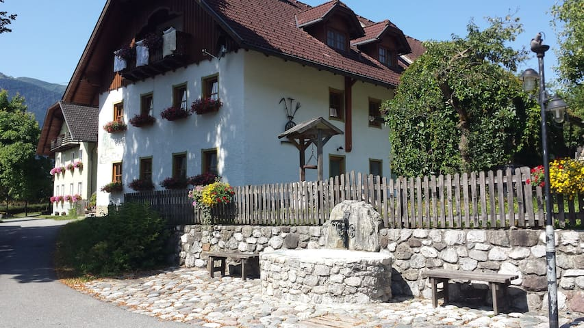 Farm Holidays - Beautiful Carinthia - Reisach - Apartmen