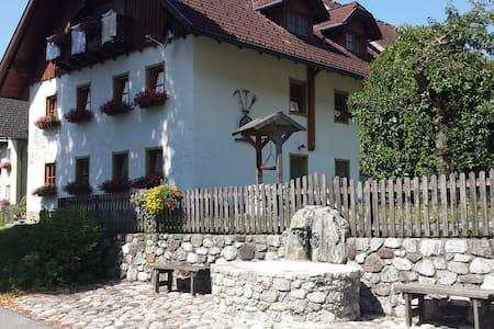 Farm Holidays - Beautiful Carinthia - Reisach - Daire