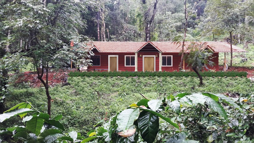 Canopy green homestay - sakleshpur