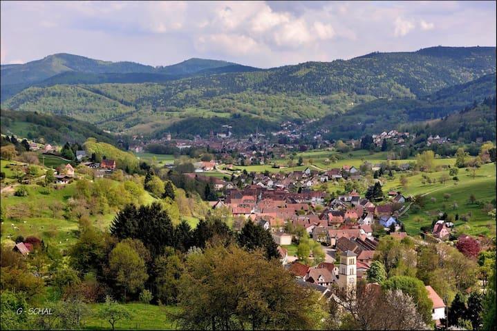 Location au pied des Vosges