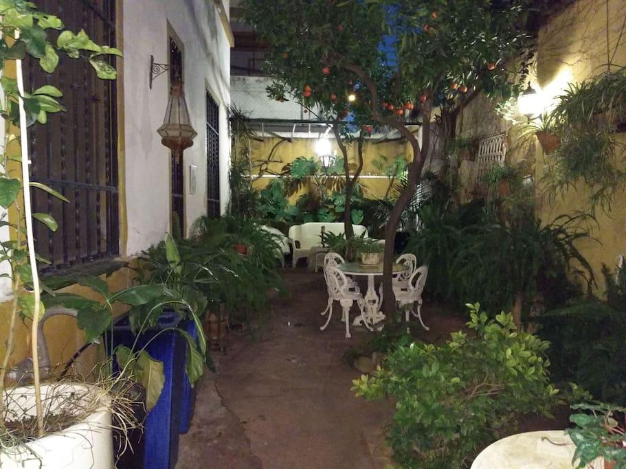 Patio interior para desayunar al aire libre rodeado plantas o tomar una copa y descansar
