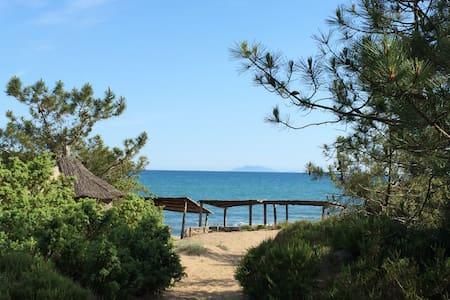 Super Sun filled, cozy, airy, green, private beach - Roccamare