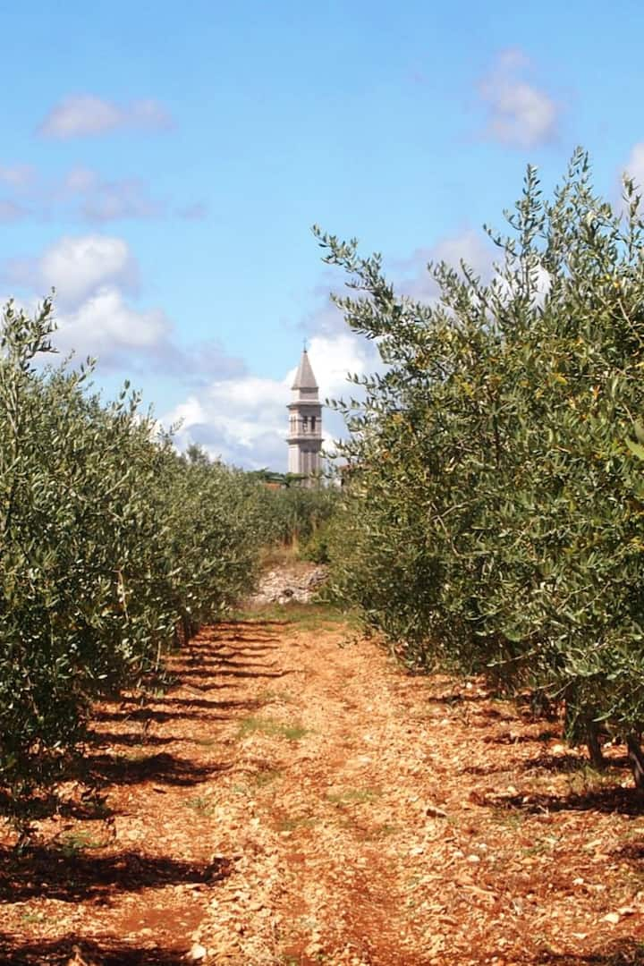 view of the tower from our olive grove