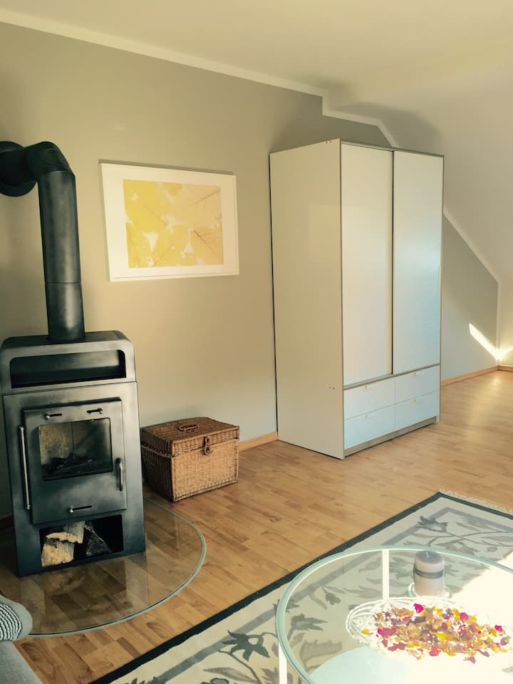 2 apartments with chimney for up to 10 guests