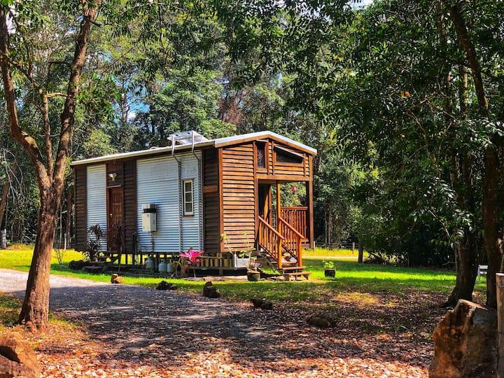 Sanctuary Cabin - Noosa Hinterland
