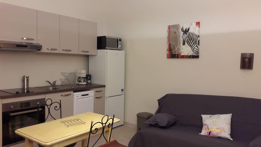 LE  KALLISTE bel appartement coeur centre ville