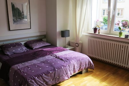 Specious room (18 m2) in nice flat - Luxembourg - Huoneisto
