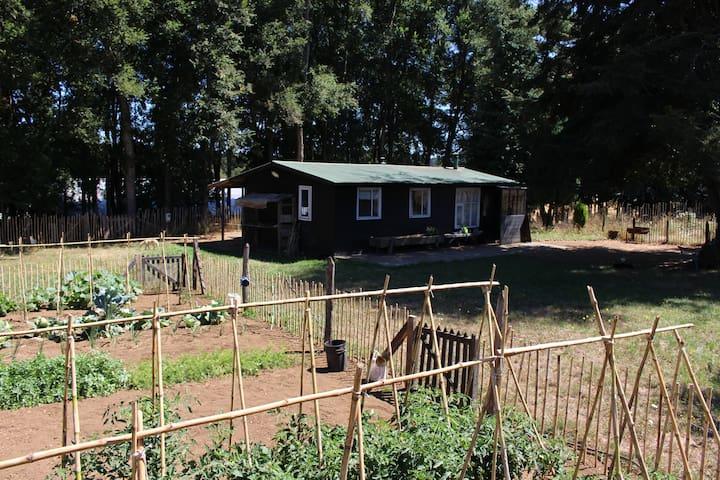 Magnífica y tranquila casa rural - Temuco