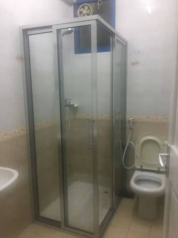 Shower area, toilet and sink