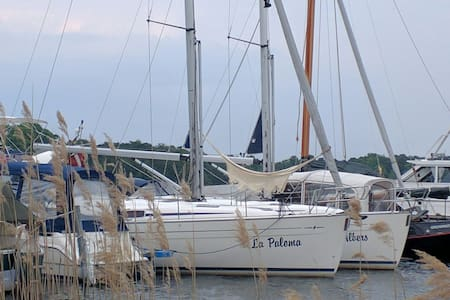 Sailing Yacht in Bad Saarow for up to 4 persons