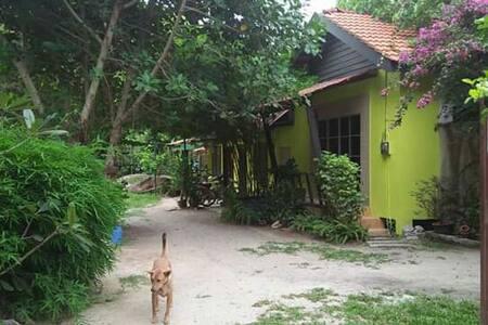Rumah Holistic Wellness & Nature 1