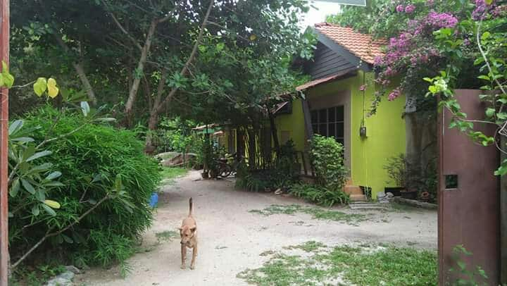 Rumah Holistic Wellness & Nature 1