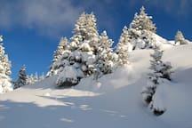 It's time to start your next ski adventure!