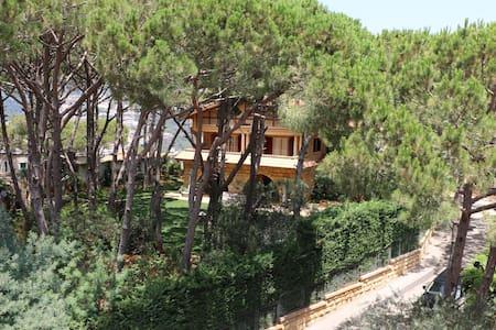 Villa Mimosa - Baabdat - Villa