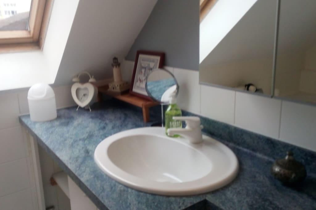 Salle de bain privative (+WC séparés)