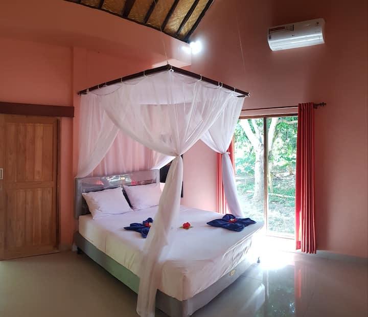Mango room