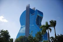 The Guitar Hotel a must see