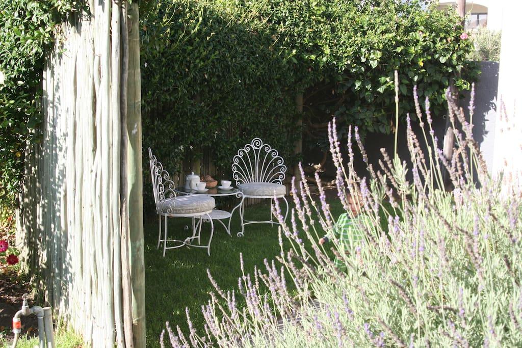 Cozy little garden to enjoy refreshments