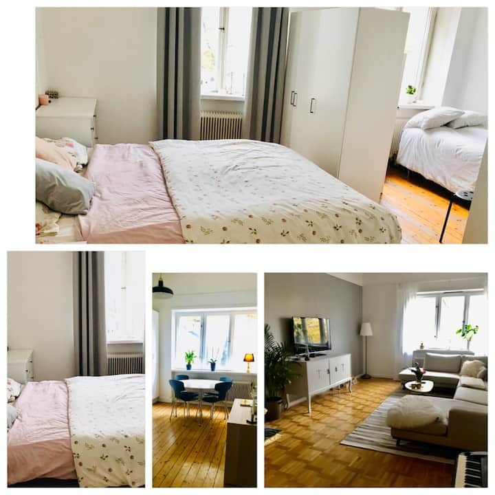Beautiful & comfortable large room in the city!
