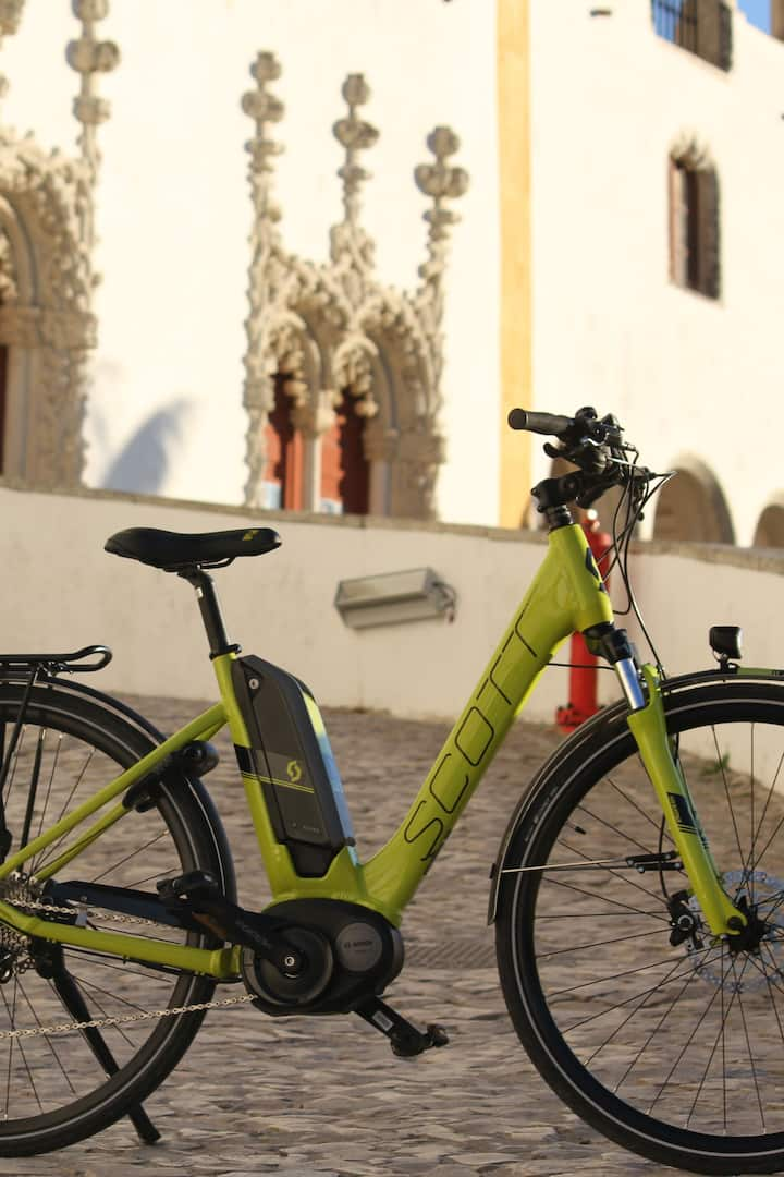 Our electric bicycle
