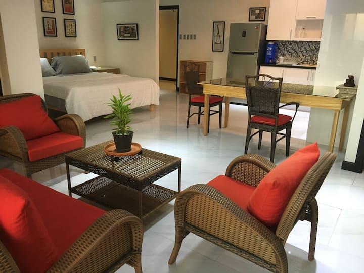 Zeppelin Suites King Studio Type Condominium 607