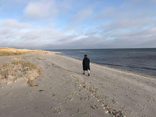 Hygge og afslapning i højsædet / Nordjylland. - Hals