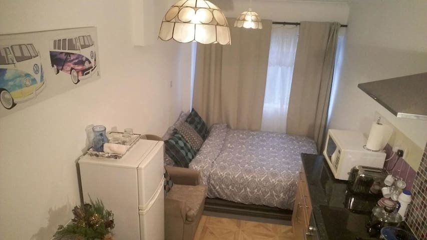 1 Bedroom with private bathroom and kitchen