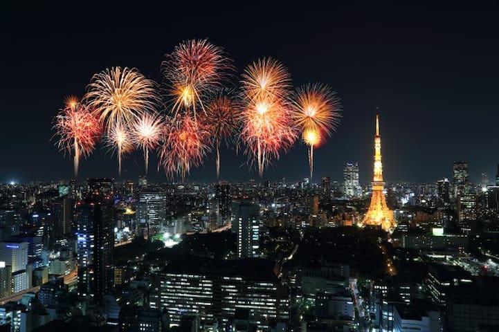 Tokyo Bay Firework