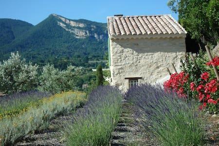 Cabanon provençal à Nyons
