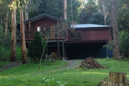 Nestled among the gum trees. - Belgrave - House
