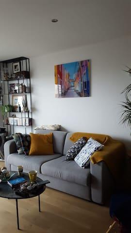 Très bel appartement sur Nogent Sur Marne