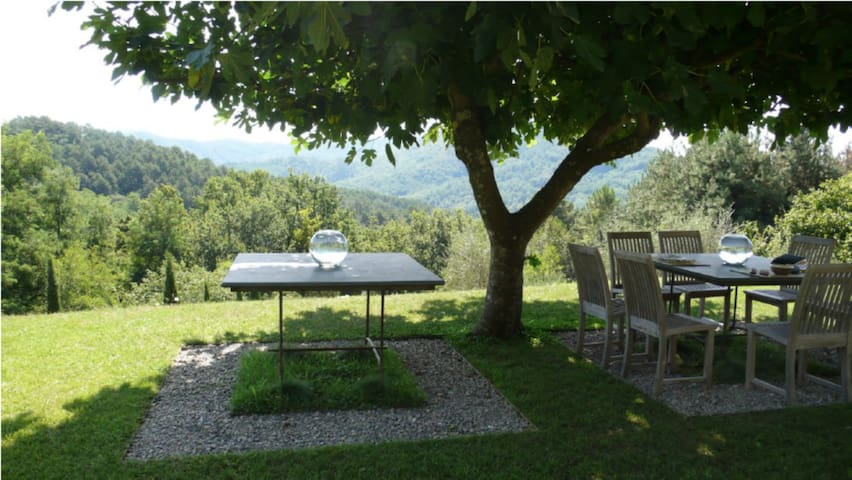 Breakfast under the fig trees