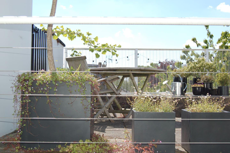 Secret roof garden in sunny Hampstead home