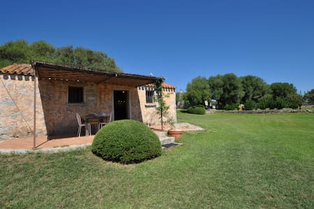 Small beautiful cottage in  Olbia