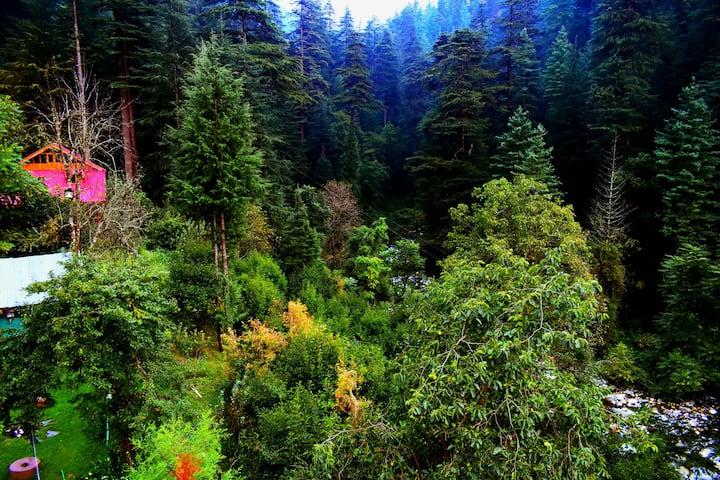 Lavish Bungalow|Wildlife| Riverside|Duplex