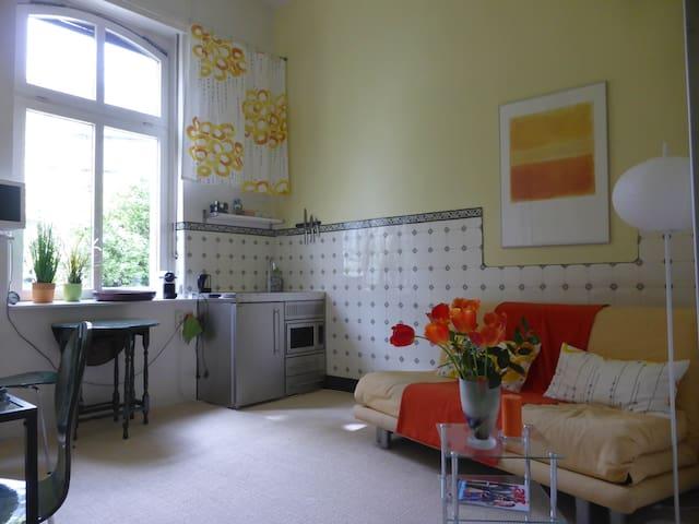Schönes Studio in Gründerzeithaus - Bonn - Wohnung