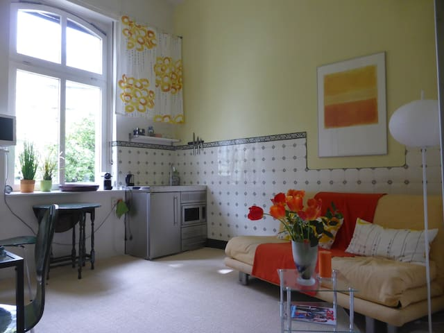 Schönes Studio in Gründerzeithaus - Bonn - Selveierleilighet