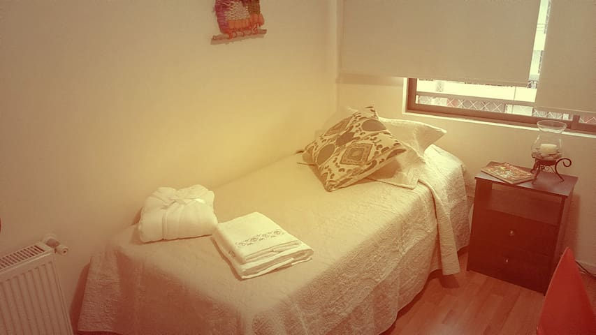 Romina & Dominga´s place - Providencia - Appartement
