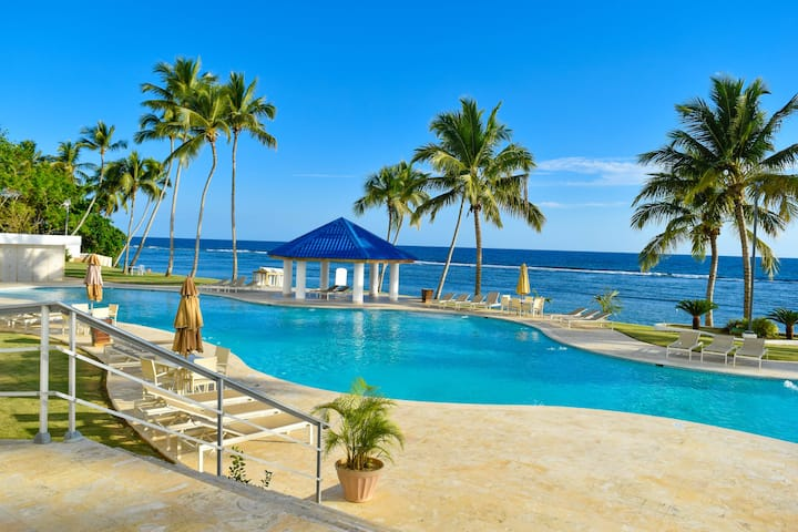 Las Olas Ocean View Apartment