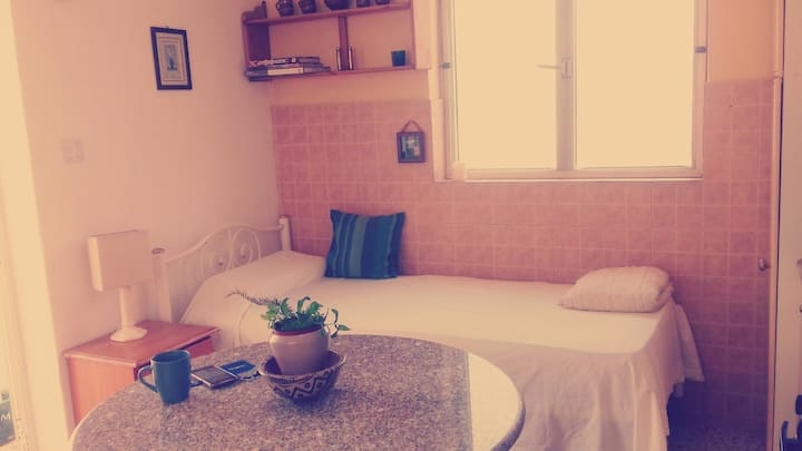 Private Bedroom with large terrace & own kitchen.