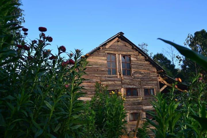 Sapa Jungle Homestay - Shared Dorm