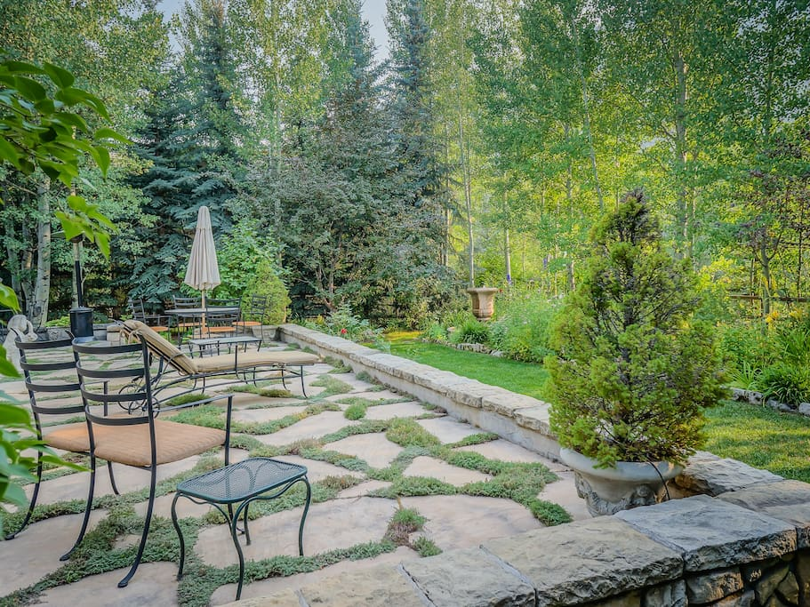 In the Summer the back yard is awash with green from the Aspen trees, grass and garden